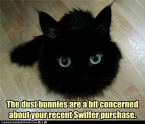 The dust bunnies are a bit concerned about your recent Swiffer purchase.