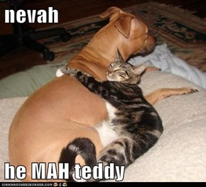 nevah  he MAH teddy