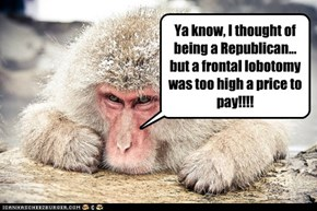 Ya know, I thought of being a Republican...but a frontal lobotomy was too high a price to pay!!!!