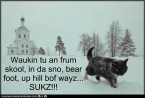 Waukin tu an frum skool, in da sno, bear foot, up hill bof wayz... SUKZ!!!