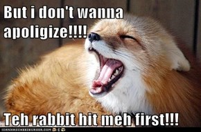 But i don't wanna apoligize!!!!  Teh rabbit hit meh first!!!