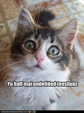 Yu haff mai undefided tenshunz