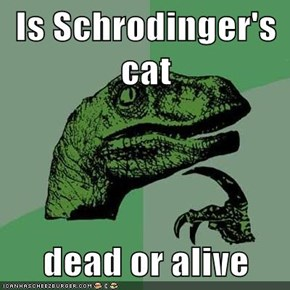 Is Schrodinger's cat  dead or alive