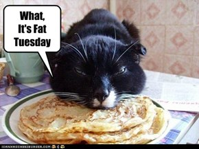 What,It's Fat Tuesday