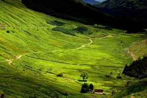 Secluded Glen, Scotland