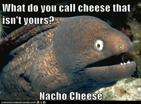 Bad Joke Eel: All Cheese Is My Cheese!