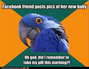 Paranoid Parrot: The Morning After