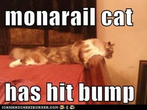 monarail cat  has hit bump