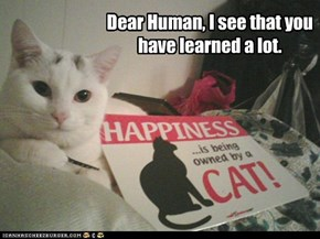 Dear Human, I see that you have learned a lot.