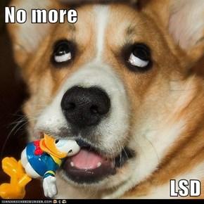 No more  LSD