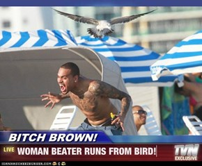 BITCH BROWN! - WOMAN BEATER RUNS FROM BIRD!