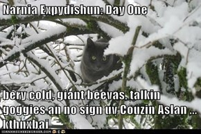 LOLcats: Narnia Expydishun
