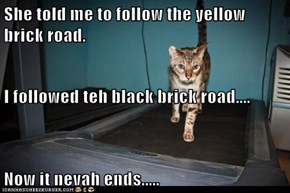 She told me to follow the yellow brick road. I followed teh black brick road.... Now it nevah ends.....