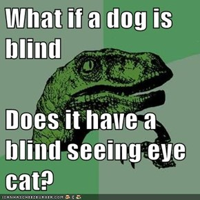 What if a dog is blind  Does it have a blind seeing eye cat?