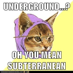 Hipster Kitty: The Underground Is So Mainstream