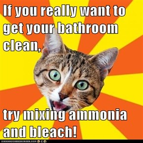 Bad Advice Cat: Cleanliness Is Next to Godliness