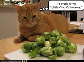 damzed veggytaryyans!