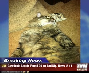 Breaking News - Garefields Cousin Found OD on Bad Nip. News @ 11