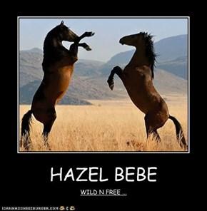 HAZEL BEBE
