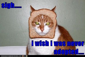 sigh.....  i wish i was never adopted....
