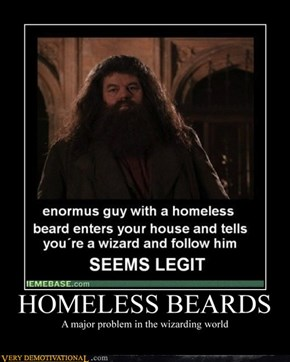 HOMELESS BEARDS