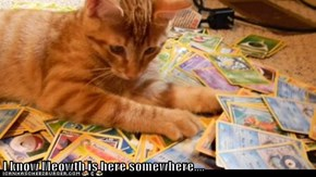 I know Meowth is here somewhere....
