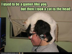 LOLcats: I used to be
