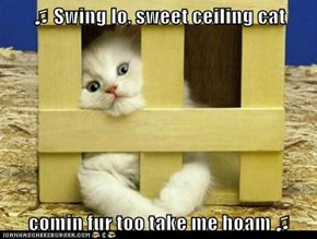 ♫ Swing lo, sweet ceiling cat  comin fur too take me hoam ♫