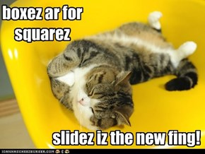 Sleep and slide, it's a kitteh thing