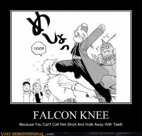 FALCON KNEE