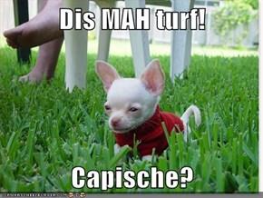 Dis MAH turf!  Capische?
