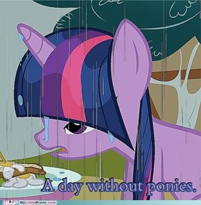 A Day Without Ponies