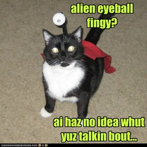 LoLcats are from outer space, makes sense, really.