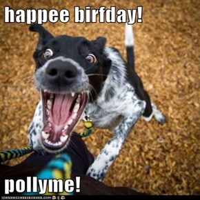 happee birfday!  pollyme!