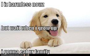 I iz harmless nowz but wait when i grow up i gonna eat ur family