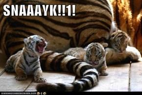 SNAAAYK!!1!