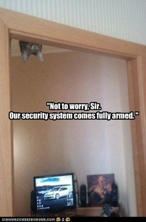 Fully Armed Security System