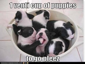 1 venti cup of puppies  to go pleez