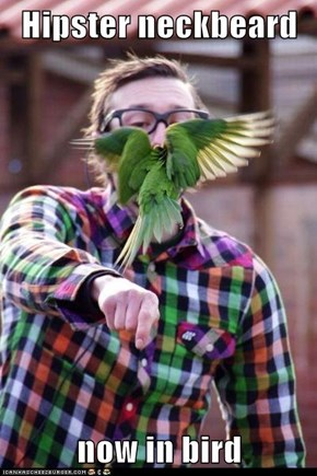 Hipster neckbeard  now in bird
