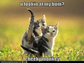 u lookin at my bum?  cheeky monkey