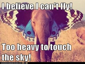 I believe I can't fly!  Too heavy to touch the sky!
