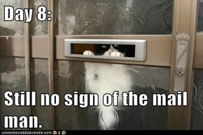 Day 8:  Still no sign of the mail man.