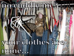 no cuddle me?  your clothes are mine...
