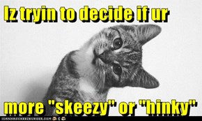 "Iz tryin to decide if ur  more ""skeezy"" or ""hinky"""