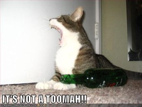 IT'S NOT A TOOMAH!!