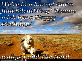 We're in a hurry! Gotta find SilentWing! Wanna wish her a Happy Birthday!  wally01 and The Herd