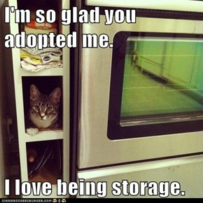 I'm so glad you adopted me.