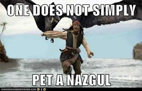 ONE DOES NOT SIMPLY  PET A NAZGUL