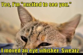 "Yes, I'm ""excited to see you.""  I moved an eye whisker. Swearz."
