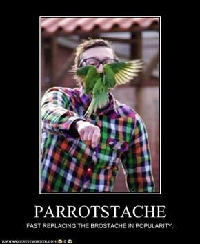 PARROTSTACHE